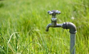 un robinet dans l'herbe